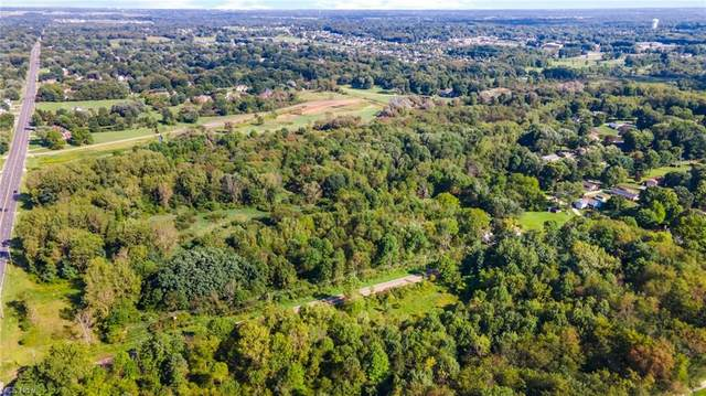 Applegrove Street NW, North Canton, OH 44720 (MLS #4316422) :: TG Real Estate