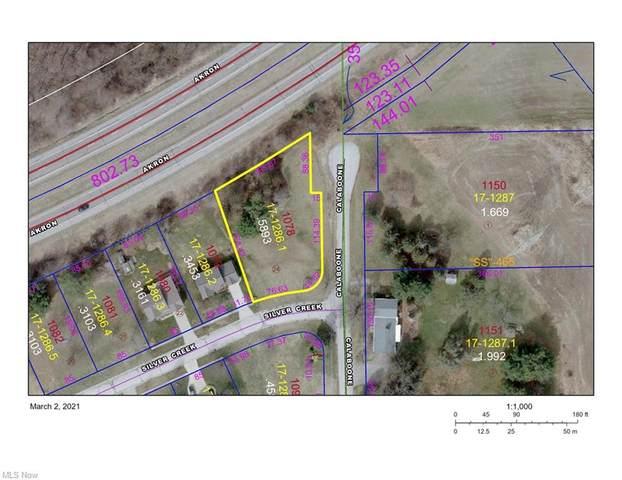 Silver Creek Drive, Doylestown, OH 44230 (MLS #4316488) :: TG Real Estate