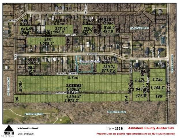 Austin Road, Geneva-on-the-Lake, OH 44041 (MLS #4316531) :: TG Real Estate