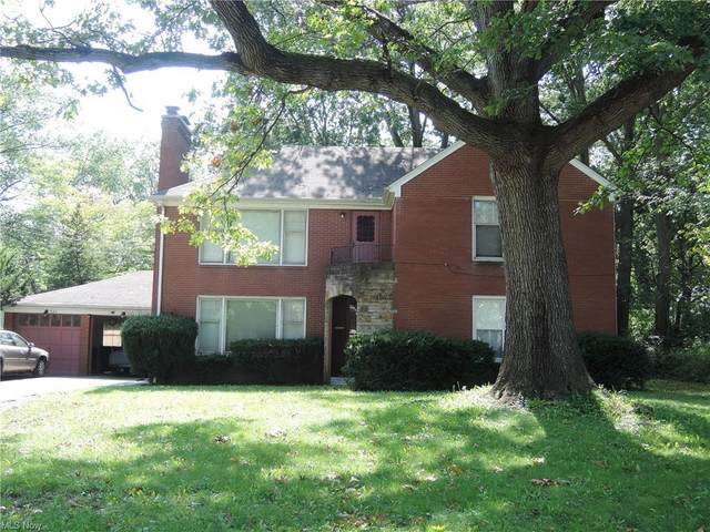 541 Madera, Youngstown, OH 44504 (MLS #4316900) :: Tammy Grogan and Associates at Keller Williams Chervenic Realty