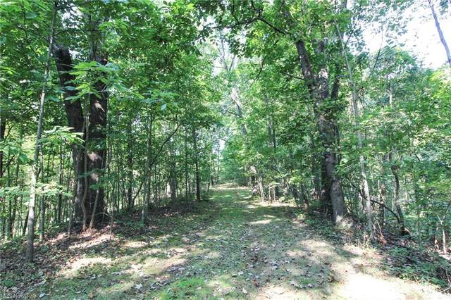 Post Boy Road, Newcomerstown, OH 43832 (MLS #4317235) :: TG Real Estate