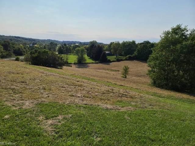 Maysville Pike, Roseville, OH 43777 (MLS #4317351) :: TG Real Estate