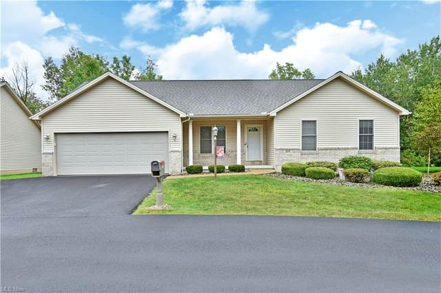 217 Paulo Drive NE, Warren, OH 44483 (MLS #4317436) :: The Art of Real Estate