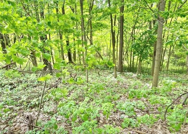 Gayer Road, Valley City, OH 44280 (MLS #4317461) :: TG Real Estate