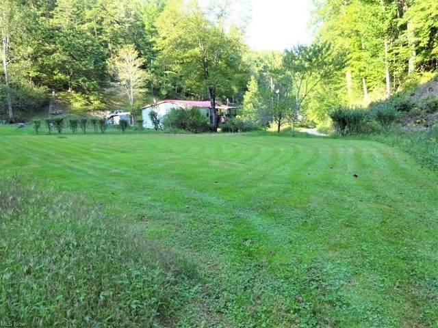 1709 Slab Fork, Spencer, WV 25276 (MLS #4317603) :: The Jess Nader Team | REMAX CROSSROADS