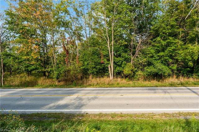 VL Ridge Road, Medina, OH 44256 (MLS #4317638) :: Simply Better Realty