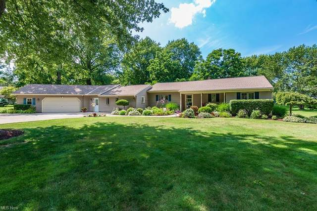 9001 Mountain View Drive, Mentor, OH 44060 (MLS #4317654) :: Simply Better Realty