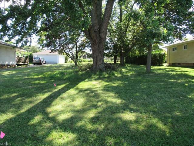 E Clearview Avenue, Seven Hills, OH 44131 (MLS #4317990) :: TG Real Estate