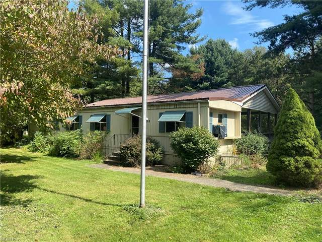 6624 Belz Drive, Andover, OH 44003 (MLS #4317996) :: Simply Better Realty