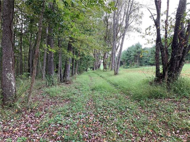 State Route 43, Amsterdam, OH 43903 (MLS #4318262) :: Keller Williams Chervenic Realty