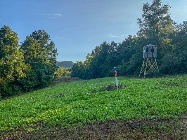 0 Woodyard Road Road, Stockport, OH 43787 (MLS #4318357) :: The Holden Agency