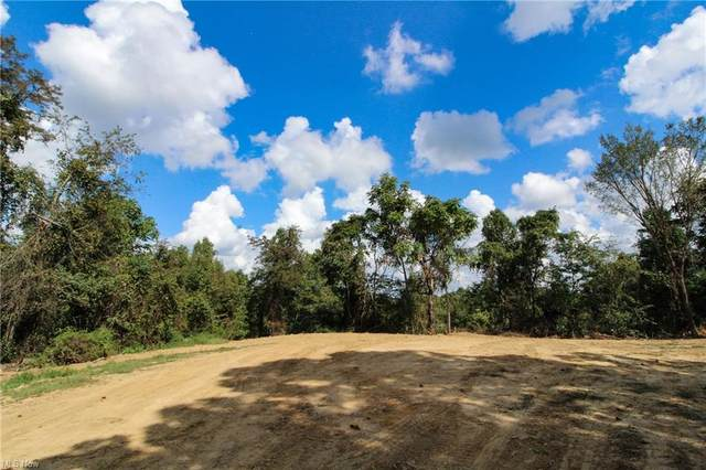Carter Rd, Summerfield, OH 43778 (MLS #4318417) :: The Holden Agency