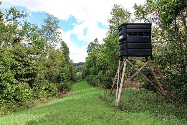 Fiddle Creek, Summerfield, OH 43788 (MLS #4318446) :: The Holden Agency