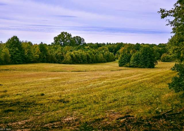 V/L State Route 305, Southington, OH 44470 (MLS #4318464) :: TG Real Estate