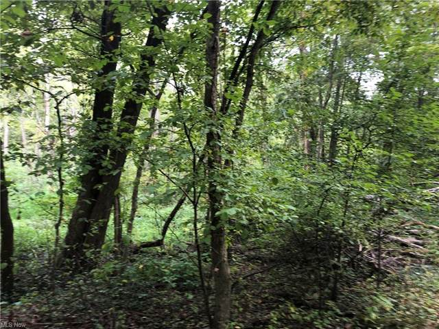 E Tuscarawas Ext Avenue, Barberton, OH 44203 (MLS #4318557) :: Simply Better Realty