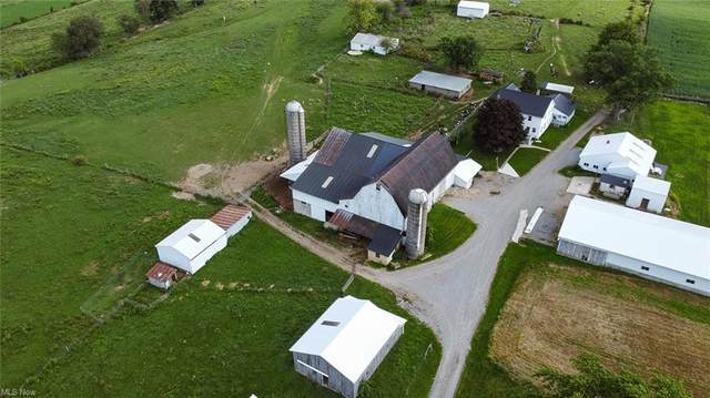 5340 Township Road 606, Mount Hope, OH 44627 (MLS #4318653) :: Tammy Grogan and Associates at Keller Williams Chervenic Realty