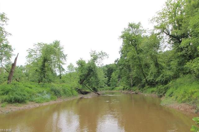 Plank Road, Orwell, OH 44076 (MLS #4318860) :: The Holden Agency