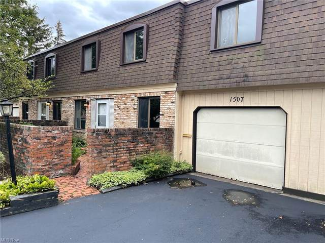 1651 Mentor Avenue #1507, Painesville, OH 44077 (MLS #4319387) :: The Jess Nader Team | REMAX CROSSROADS