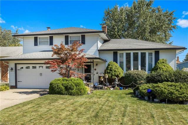 337 Campus Court, Eastlake, OH 44095 (MLS #4320037) :: The Holden Agency