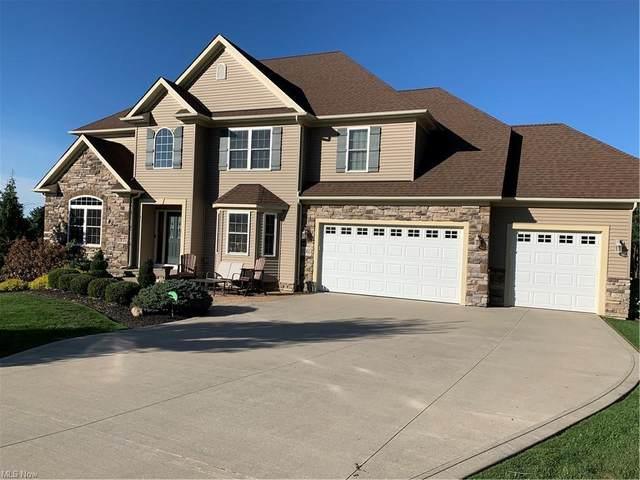 8060 Rainbow Drive, Painesville Township, OH 44077 (MLS #4320421) :: The Tracy Jones Team
