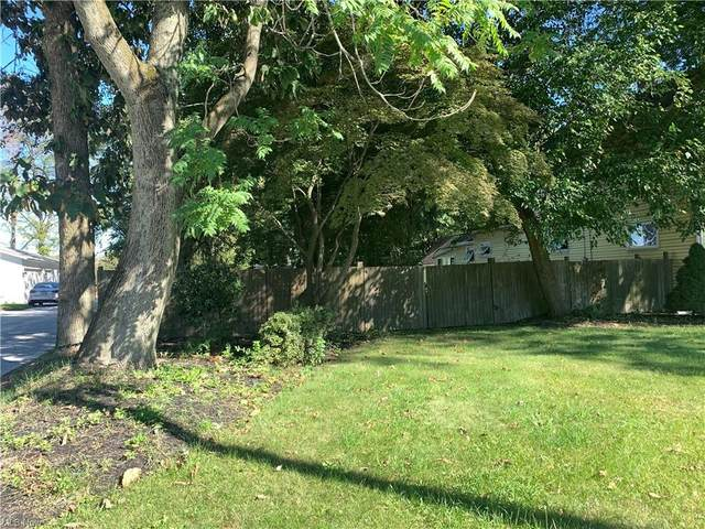 E 49th Street, Cuyahoga Heights, OH 44125 (MLS #4320553) :: RE/MAX Edge Realty