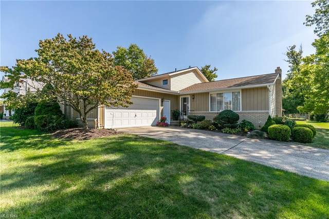 20669 Chestnut Drive, Strongsville, OH 44149 (MLS #4321497) :: RE/MAX Edge Realty