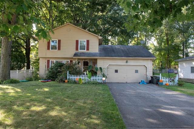 3767 Edinburgh Drive, Youngstown, OH 44511 (MLS #4322123) :: The Holly Ritchie Team