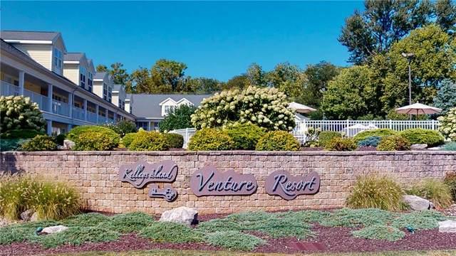 411 W Lakeshore Drive, Kelleys Island, OH 43438 (MLS #4322287) :: Simply Better Realty