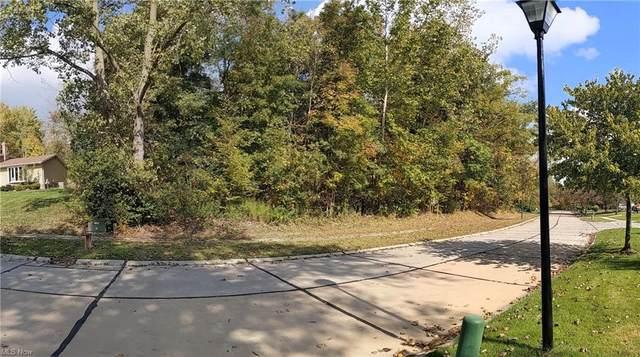 VL Deer Run Road, Solon, OH 44139 (MLS #4322704) :: Vines Team