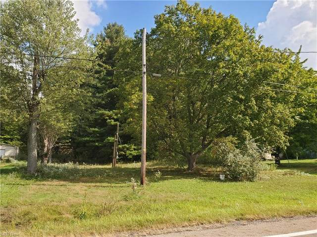 1060 State Route 183, Atwater, OH 44201 (MLS #4323166) :: Simply Better Realty