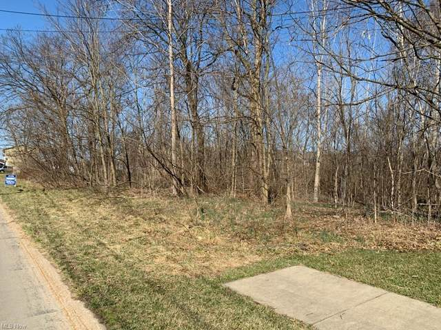 Academy Ct., Painesville, OH 44077 (MLS #4323778) :: Jackson Realty