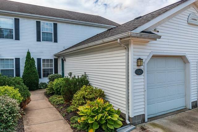 2524 Madison Avenue, Perry, OH 44077 (MLS #4323855) :: RE/MAX Edge Realty