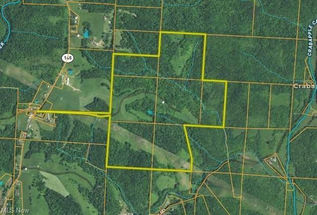 Shriver Rd, Alledonia, OH 43902 (MLS #4324170) :: The Crockett Team, Howard Hanna