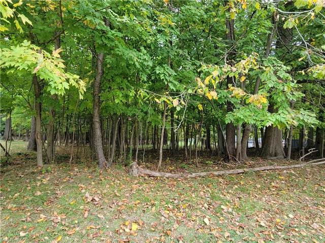 W Royalton Road, Broadview Heights, OH 44147 (MLS #4324255) :: The Holly Ritchie Team