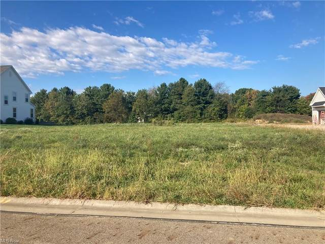 Leighfield Lane NE, Hartville, OH 44632 (MLS #4324894) :: The Holly Ritchie Team