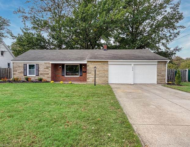 224 Chestnut Street, Painesville, OH 44077 (MLS #4325077) :: The Art of Real Estate