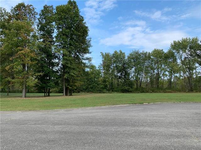 Black Duck Court, Cortland, OH 44484 (MLS #4325313) :: TG Real Estate