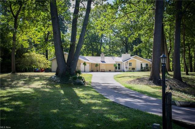 49113 Whittlesey Road, Amherst, OH 44001 (MLS #4325711) :: The Holly Ritchie Team