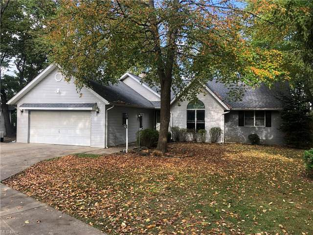 430 Button Avenue, Painesville, OH 44077 (MLS #4325734) :: Jackson Realty