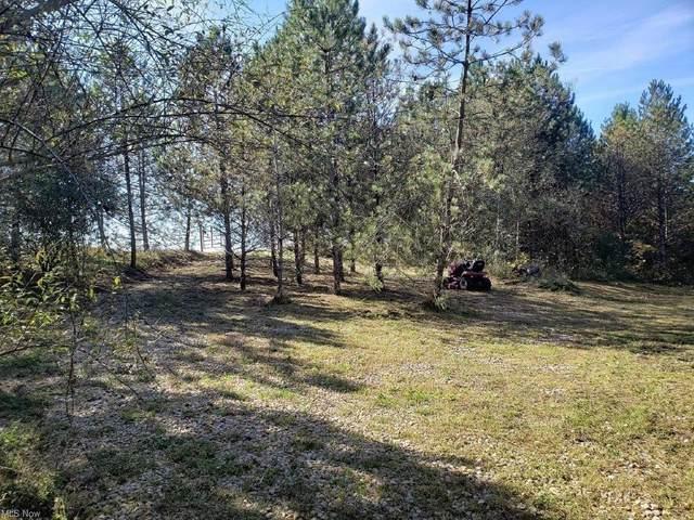 Ridgeview Road, Chandlersville, OH 43727 (MLS #4325790) :: Keller Williams Legacy Group Realty