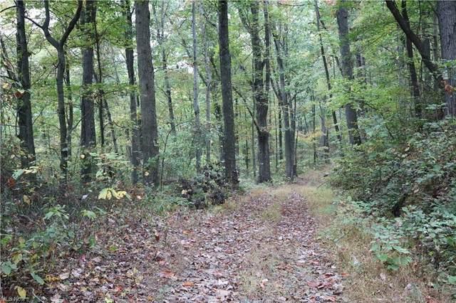 2115 Goss Fork Road, Whipple, OH 45788 (MLS #4326276) :: RE/MAX Edge Realty