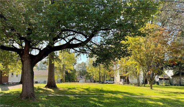 352 8th Street, Elyria, OH 44035 (MLS #4326457) :: Tammy Grogan and Associates at Keller Williams Chervenic Realty
