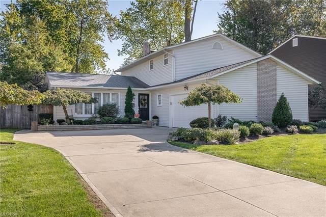 435 Riverdale Drive, Eastlake, OH 44095 (MLS #4327250) :: Krch Realty
