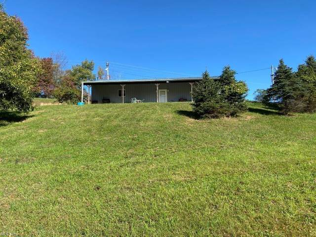 17353 Crooked Tree Road, Dexter City, OH 45727 (MLS #4327396) :: Krch Realty