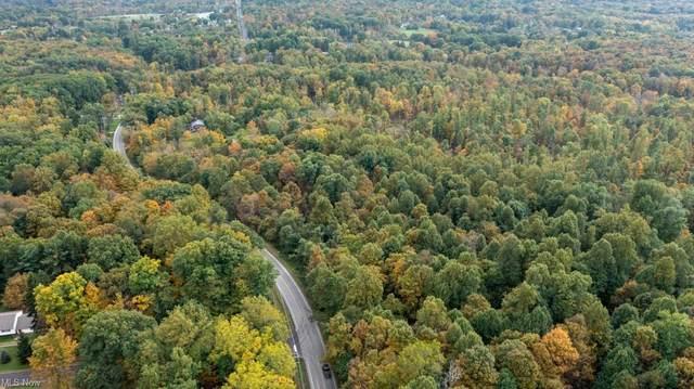 Auburn Road, Newbury, OH 44065 (MLS #4327430) :: Tammy Grogan and Associates at Keller Williams Chervenic Realty