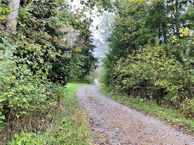 4459 Johnstown Road, Dover, OH 44622 (MLS #4327458) :: Jackson Realty