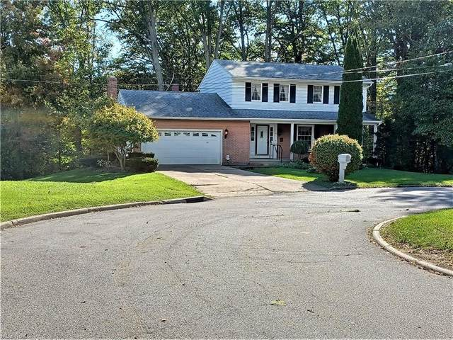 6624 Hiram Avenue, Ashtabula, OH 44004 (MLS #4327832) :: Select Properties Realty