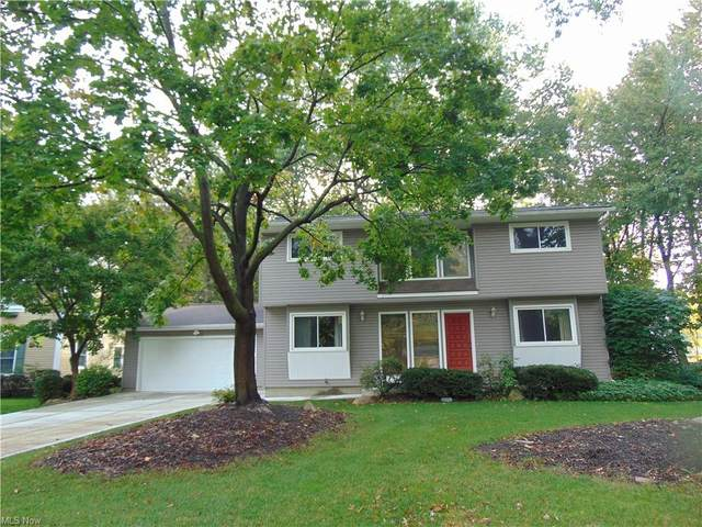 6919 Traymore Court, Mentor, OH 44060 (MLS #4328034) :: Krch Realty