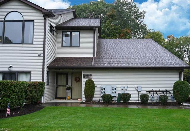7292 Village Drive, Mentor, OH 44060 (MLS #4328146) :: RE/MAX Edge Realty