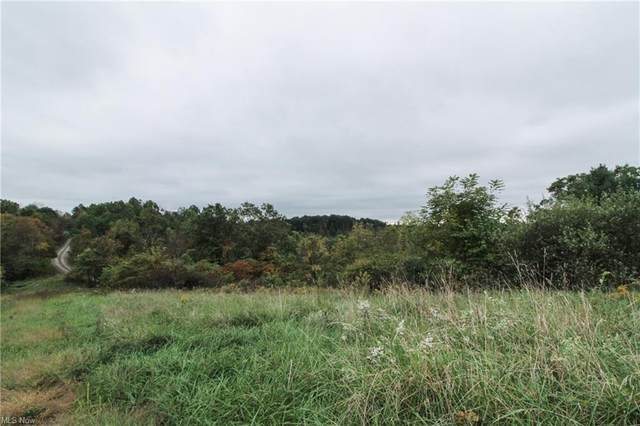 0 Goose Hollow Rd, Dexter City, OH 45727 (MLS #4328434) :: RE/MAX Edge Realty